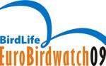 Logo EBW 2009