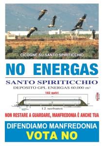 manifesto Cicogne NoEnergas