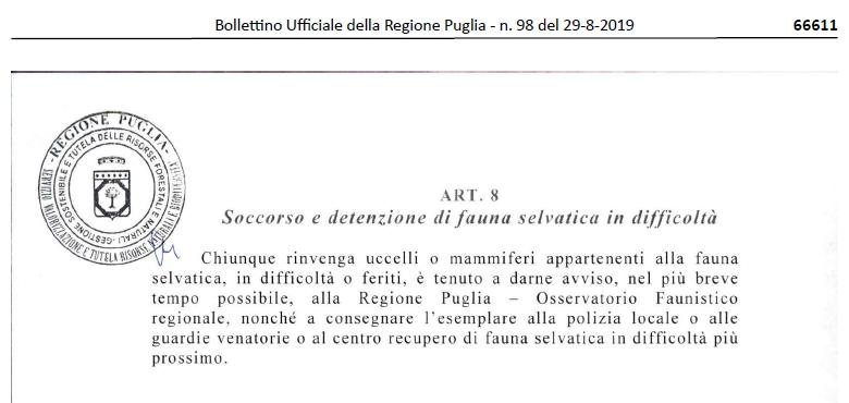 DGR 1558 del 2.8.19, art.8